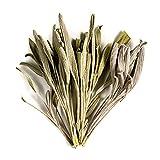 Salbei Bio Blätter - Gourmet Gewürz Direkt Aus Griechenland - Salbeitee - Salbeiblätter 100g