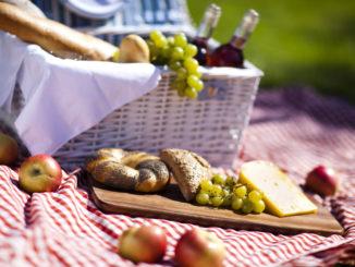 Picknick – ein Sommerspaß